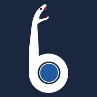 Salvatore_Ferrari